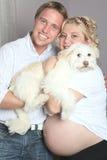 Bauch einer sehr schwangeren Frau mit ist Freund Stockbilder