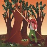 Bauer, der Birnen erntet Stockbild