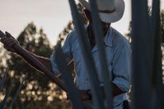 Bauerarbeiten gesehen von einer Agave Stockfotografie