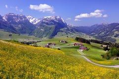 Landschaft in der Schweiz stockfotografie