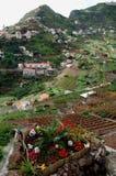 Bauernhäuser und Landwirtschaft auf Madeira-Insel stockfotos