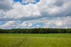 Bauernhöfe der blühenden Landschaften Pferde Landschaftsfrühlingslandschaft Stockfotografie