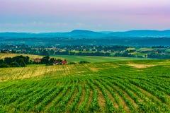 Bauernhöfe und Ackerland Stockfotos