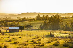 Bauernhöfe und Berge, Äthiopien Stockbilder
