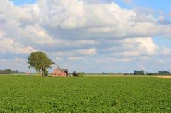 Bauernhaus Lizenzfreies Stockbild