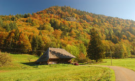 Bauernhaus im Fall stockfoto