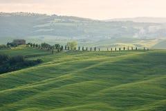 Bauernhaus mit cypess Gasse und Feldern, Toskana, Italien Lizenzfreies Stockfoto