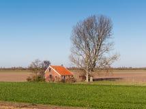 Bauernhaus nahe bei einem alten hohen und bloßen Baum Lizenzfreie Stockfotos