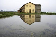Bauernhaus reflektiert in einem Reisfeld Mutter mit zwei Töchtern Stockbild
