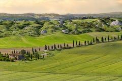 Bauernhaus und Gasse in nahem Siena, Kreta Senesi, Toskana, Italien Stockfotografie