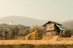 Bauernhaus und Pagode Stockfotografie