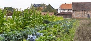 Bauernhausgarten in der Sommerzeit Stockfotos