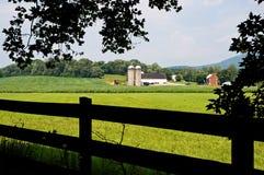 Bauernhof über dem Feld Stockfotos