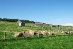 Bauernhof. Lizenzfreie Stockfotografie