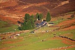 Bauernhof auf Dartmoor Lizenzfreie Stockfotos