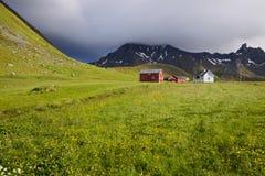 Bauernhof auf Lofoten Stockbild