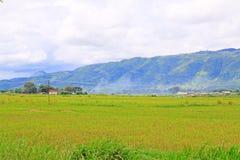 Bauernhof bei Nyaungshwe, Myanmar lizenzfreie stockfotografie