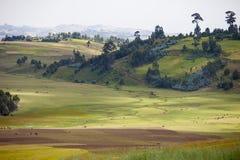 Bauernhof in den Bergen von Äthiopien Stockfotos