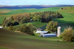 Bauernhof in den Palouse-Hügeln Lizenzfreie Stockbilder