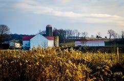 Bauernhof an der Dämmerung Lizenzfreies Stockbild