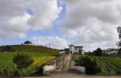 Bauernhof in der Landschaft Lizenzfreie Stockfotografie