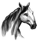 Bauernhof des Pferd Head stock abbildung