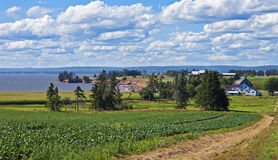 Bauernhof durch das Meer, Nova Scotia stockfotografie