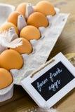 Bauernhof-Eier lizenzfreies stockbild