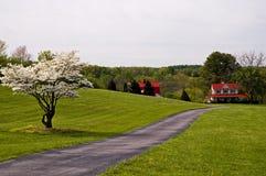 Bauernhof am Ende des Wegs lizenzfreie stockbilder