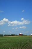 Bauernhof, Ernten und rote Scheune Stockfoto