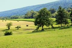 Bauernhof-Feld und Gebirgsrücken Lizenzfreie Stockfotografie