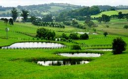 Bauernhof-Felder Stockfoto