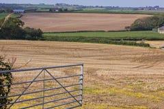 Am Bauernhof-Gatter Lizenzfreie Stockbilder