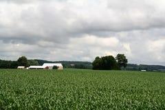 Bauernhof-Haus mit Stall auf Hügel Stockfotografie