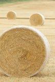 Bauernhof Hay Harvest Lizenzfreie Stockfotos