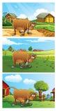 Bauernhof-Hintergrund Stockbild