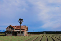 Bauernhof huse Stockfotografie