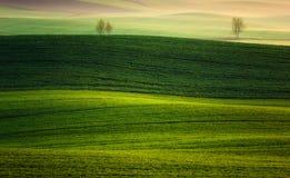 Bauernhof im Frühjahr des aufgehende Sonne Stockbild
