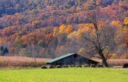 Bauernhof im Herbst Lizenzfreie Stockfotografie