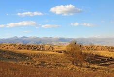 Bauernhof nach der Ernte Stockfotografie