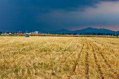 Bauernhof nach Ernte Stockbild