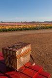 Bauernhof-Picknick Lizenzfreies Stockfoto