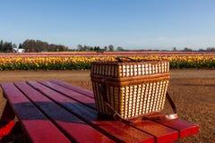 Bauernhof-Picknick Stockfotografie