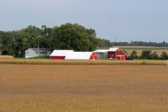 Bauernhof-Standort-rote Gebäude-Weiß-Dächer Stockbild