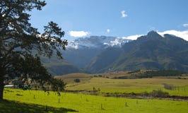 Bauernhof-Szene im Overberg - dem Südafrika Lizenzfreies Stockbild