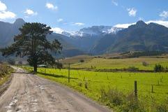 Bauernhof-Szene im Overberg - dem Südafrika Lizenzfreie Stockbilder