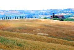 Bauernhof und Ackerland in Toskana Stockbild