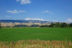 Bauernhof und Berge nähern sich dem Rat, Idaho Lizenzfreies Stockfoto
