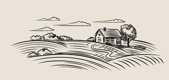 Bauernhof und Feld stock abbildung