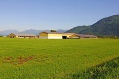 Bauernhof und Felder Lizenzfreies Stockbild